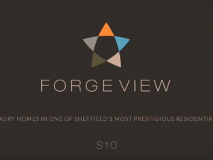 Forge View Interiors